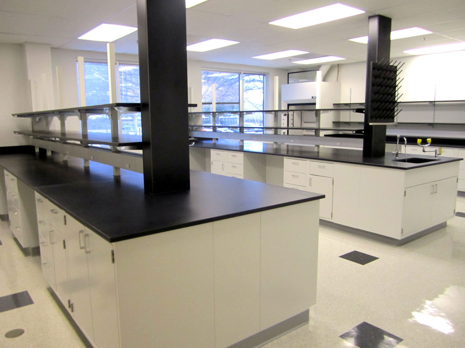 AREE Speculative Lab Space